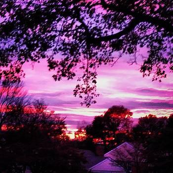 Window View by Bridgett Dockray
