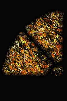 Tim Wilson - A Slice of Fall