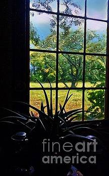 Window View on a Rainy Day by Karen Newell