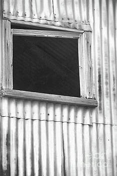 Window with a View by Kristi Beers-Mason
