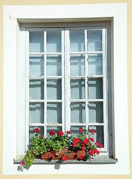 Ramunas Bruzas - Window With Flowers