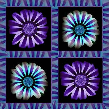 Windowpanes Brimming with  Moonburst Stripes of Flowers - Scene 1 by Jacqueline Migell