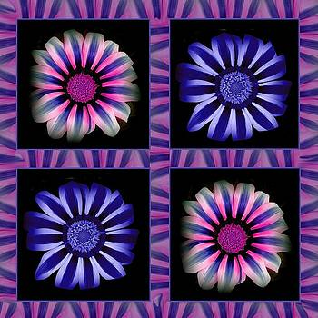 Windowpanes Brimming with  Moonburst Stripes of Flowers - Scene 4 by Jacqueline Migell