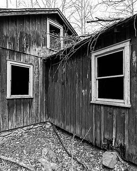 Windows 3 by Alan Raasch
