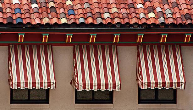 Windows - Awnings - Tiles by Nikolyn McDonald