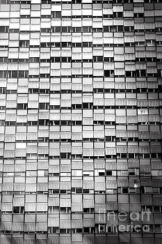 Windows - Black and White by Stefano Senise