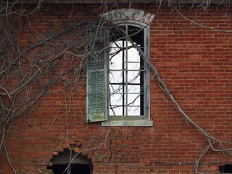Windows by Chris Shadwick