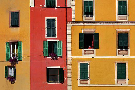 Windows by Marji Lang