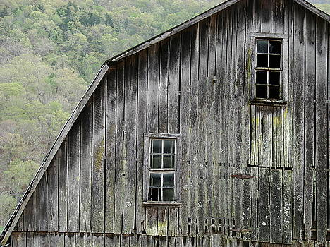 Windows of the past by Mary Halpin