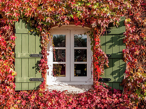 Window,Shutters,and Fall Colors by Bill Gallagher