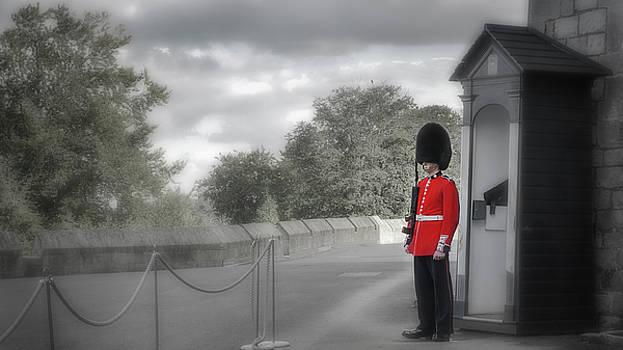 Windsor Castle Guard by Joe Winkler