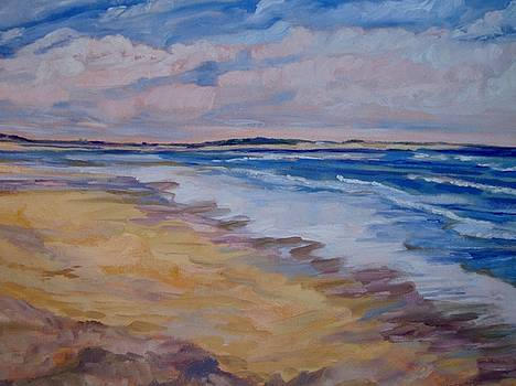 Windswept Beach by Colleen Kidder