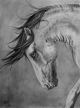 Windswept by Daniele Jones