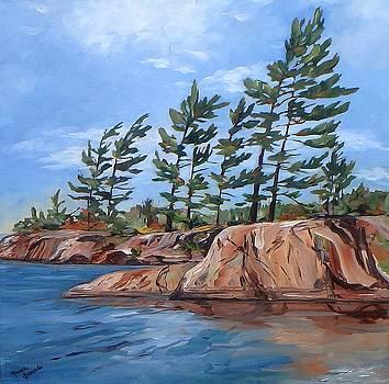 Windswept by Monica Ironside