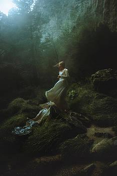 Windswept Wanderer by TJ Drysdale