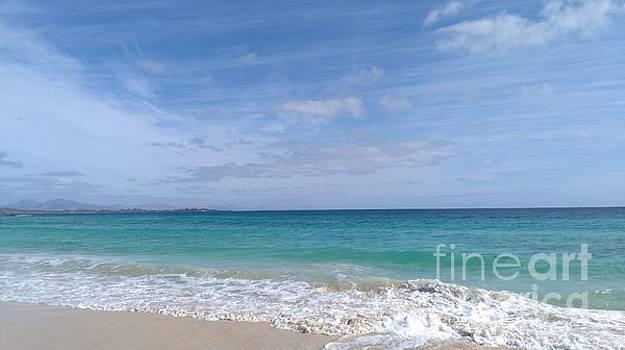 Windy Beach by Mike O'Hagan