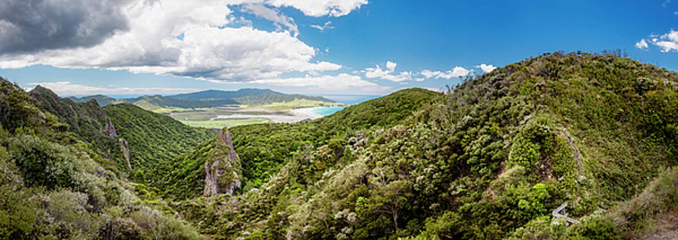 Windy Canyon Panoramic View Great Barrier Island New Zealand by Joan Carroll