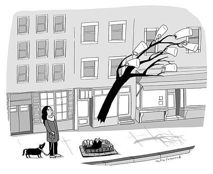 Windy Day by Mitra Farmand