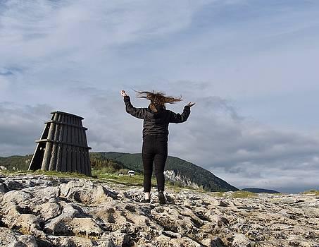 Windy day on Lofoten islands by Tamara Sushko