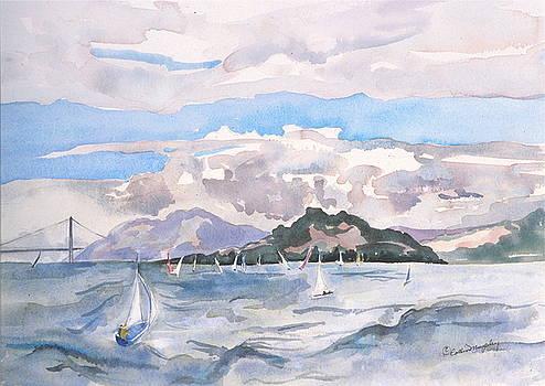 Windy Day on the Berkeley Marina by Collin Murphy