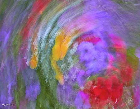 Windy day by Tim Fitzharris
