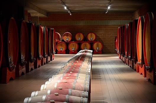 Wine Cellar in Montalcino by Chris Alberding