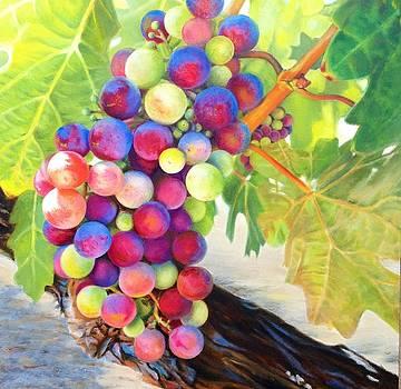 Wine on the Vine #2 by Deborah Plath