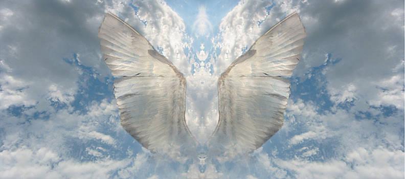 Wings 1 by Bob Bennett
