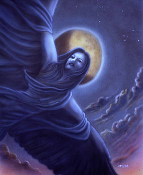 Wings of The Night by Wayne Pruse