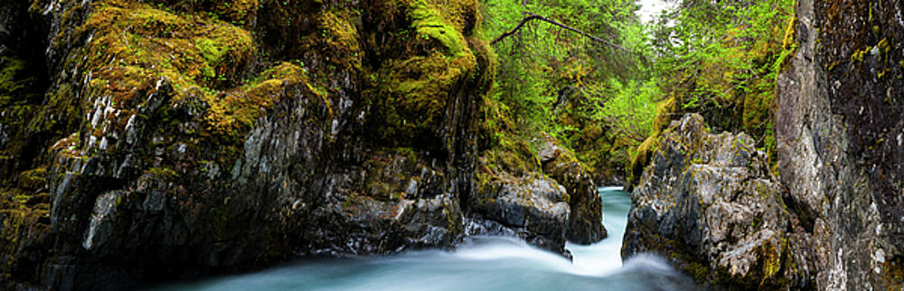 Winner Creek Gorge by Kyle Lavey