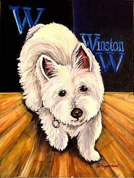 Winston by Carol Allen Anfinsen