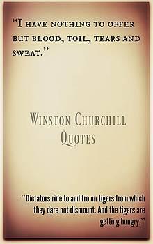 Winston Churchill2 by David Norman