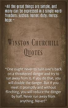 Winston Churchill6 by David Norman