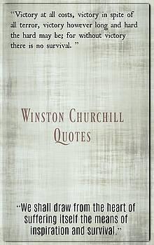 Winston Churchill7 by David Norman