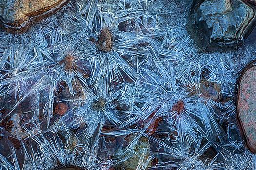 Winter Abstract by David Pringle