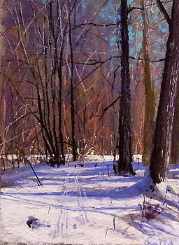 Winter Afternoon by Tom Christopher