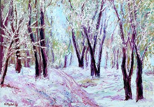 Winter Arrived Early by Stanislav Zhejbal