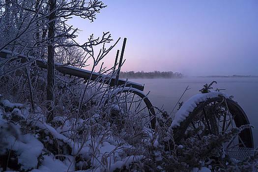 Winter Arrives by Jann Kline