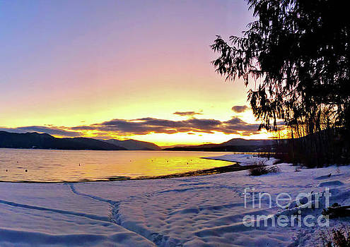 Winter At Ross Creek by Victor K
