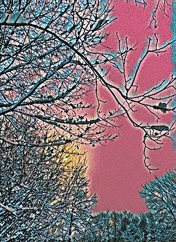 Brenda Plyer - Winter at Sundown 1