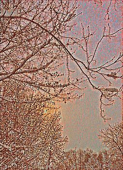 Brenda Plyer - Winter At Sundown 2