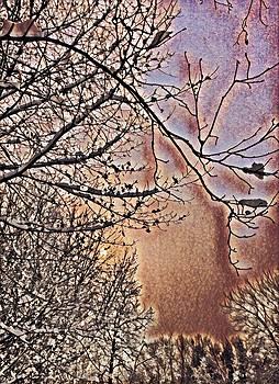 Brenda Plyer - Winter at Sundown 4