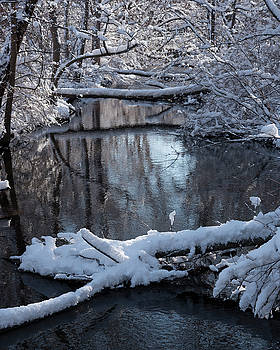 Winter at the Brook by Brian Stricker