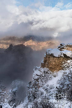Sandra Bronstein - Winter At The Grand  Canyon