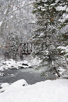 Winter at the River by Beth Erickson