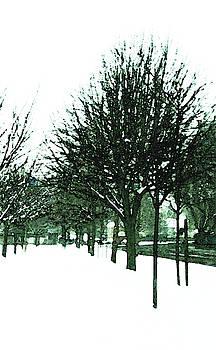 Winter Avenue by Anne Kotan