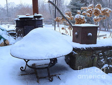 Winter barbeque by Inessa Williams