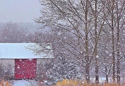 Winter Barn by Alicia Zimmerman