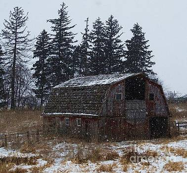 Winter Barn Beauty by J L Zarek