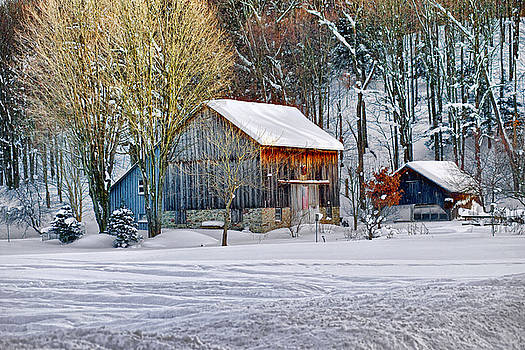 Winter Barn by Pat Carosone